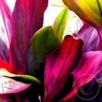 Ti Leaf Bouquet